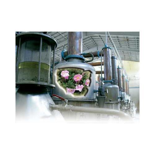宇砚大型精油提取设备大型蒸馏设备